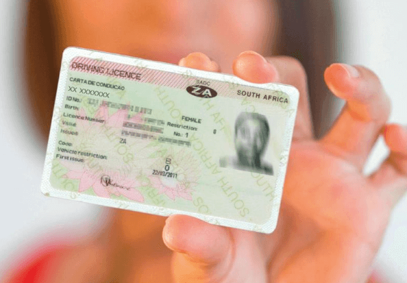 drivers licence renewal in south africa