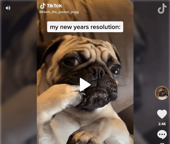TikTok users New Year 2020