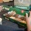 Krispy Kreme Checkers