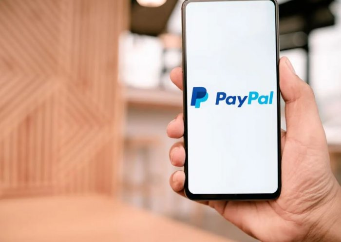 PayPal Login South Africa